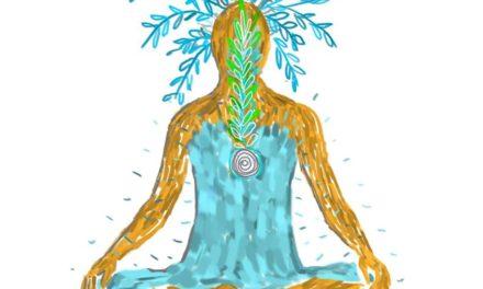 Qi Yoga