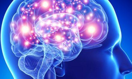 Il Sistema Mente-Emozioni- Corpo alla Luce delle 5 Leggi Biologiche