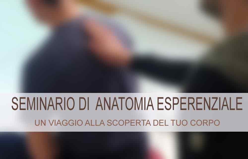 SEMINARIO DI ANATOMIA ESPERENZIALE 1 – Bellinzona